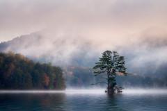 Lake Burton Fog (shutterclick3x) Tags: fog lake mountains morninglight moody autumn frankloose