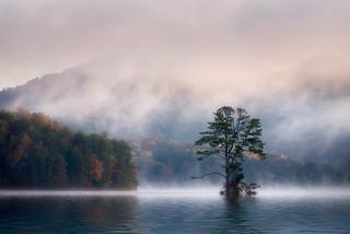 Lake Burton Fog