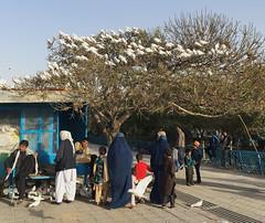 Mazar - Blue Mosque (Dreadful Dan G) Tags: afghanistan travel mazar mazarisharif