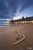 Old Orchard Beach (Sotitia Om Photography) Tags: oldorchardbeach maine newengland sunrise perspective longexposure leefilters canon canonusa teamcanon ocean seascape rope beach canon6d canon1740mm lazyshutter earlymorning landscape cambodianphotographers sotitiaomphotography unitedstates