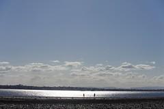 (Kirsten Cowan) Tags: nature ocean sea sandbank australia