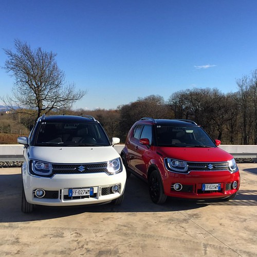 Any colour, so long as it's red. Unless you want to pay extra for metallics, including the white! #suzuki #ignis #suzukiignis #mp