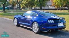 Mustang_08 (holloszsolt) Tags: ford mustang 50 outdoor vehicle sport car nanolex si3 hd autokeramia