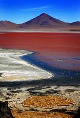 Laguna Colorada, Bolivia (klauslang99) Tags: nature photography naturalworld south america bolivia laguna colorada water flamingoes red lake mountains
