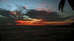 Kailua Kona Sunset (NGC7635) Tags: kailua kona hawaii sunset palm tree canon eos rebel