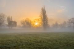 fog (discreet*(:[ )) Tags: fog 7d mark ii 24mm prime sun behind cloud landscape