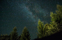 Milky Way (Andrei Apetrei) Tags: night nightsky skyphotography star starry galaxy mountain holiday outdoor nature trees vsco vscofilm milkyway milk infinite romania sky summer clearsky quite iso canon tamron landscape hike adventure beyond