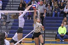 IMG_7766 (SJH Foto) Tags: girls volleyball high school york delone catholic team teen teenager net battle spike block action shot jump midair