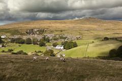 sheep at Merrivale (Peter Trott) Tags: clouds sheep moors tor dartmoor quarry