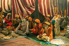 DSC_1900-Edit-copy (itzik.greenstein) Tags: india festival religious culture hinduism powerful chill naga ceremonies sadu kumbamela alhbd