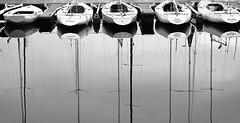 5 on a line (krøllx) Tags: reflection water norway scott boats norge photo walk worldwide sailboats skansen trondheim sørtrøndelag kelby 2015 trøndelag scottkelby wwpw trondhjemsfjorden worldwidephotowalk2015 1510030032