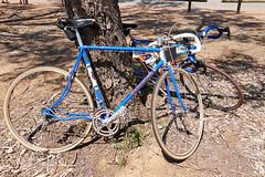 P1030126 (frithnow) Tags: bicycle events transport australia event entertainment cycle transportation aus westernaustralia beverley landtransportation