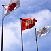 Japanese National flag, Kobe University flag and Logo