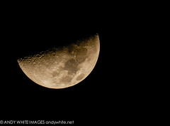 moon20151118-2 (andywhiteimages) Tags: sky moon white andy keller texas fort tx telescope half astronomy worth lunar waxing reflector waning refractor andywhitenet andywhiteimages