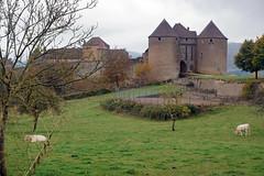 2016-10-24 10-30 Burgund 179 Berze-La-Ville