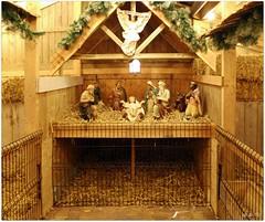 DSCI8464_ShiftN (aad.born) Tags: christmas xmas weihnachten navidad noel  tuin engel nol natale  kerstmis kerstboom kerst boi kerststal  kribbe versiering kerstshow  kerstversiering kerstballen kersfees kerstdecoratie tuincentrum kerstengel  attributen kerstkind kerstgroep aadborn nativitatis