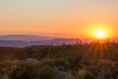 Late Desert (gseloff) Tags: sunset landscape westtexas chihuahuandesert bigbendranchstatepark bbrsp gseloff