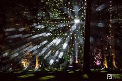 An Enchanted Christmas - Westonbirt Arboretum (philrdjones) Tags: christmas night lights december arboretum westonbirt enchanted 2015