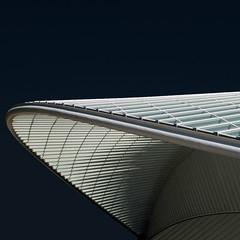 Cap backwards (Arni J.M.) Tags: windows sky building architecture pattern shadows belgium trainstation calatrava curve liege santiagocalatrava guillemins capbackwards