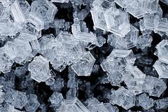 Galaverna - Geometrie spontanee (Giovanni Aquaro) Tags: ice brina geometria galaverna cristalli chiaccio