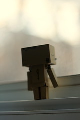 Hello world ... (nataliaminkphotography) Tags: window dof bokeh naturalight danbo danboard danbolove adventuresofdanbo