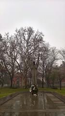 WP_20151208_09_46_18_Rich (2) (Dimitar Dt) Tags: trees bw white mist black monochrome saint mobile zeiss photography sofia bulgaria microsoft ms mists 950 climent lumia kliment tumblr ohridski lumia950 okhridski lumiaandplaces