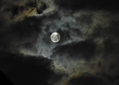 full moon 24/12/2015 (conteluigi66) Tags: nikon nuvole alone zoom luna p900 luce riflesso contemplazione bagliori sprazzi luigiconte riflrssione
