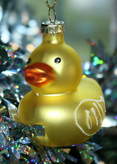 Rubber Duckie Ornament (peachy92) Tags: chathamcountyga chathamcountygeorgia chatham chathamcounty 2015 christmas2015 christmas home christmaslights savannah christmastrees christmastree ornament christmasornaments ornaments christmasornament ga georgia us usa unitedstates unitedstatesofamerica canoneosdigitalrebelxs canoneos1000d ducks duck rubberducks rubberduck duckie ducky rubberducky rubberduckies rubberduckie savannahga savannahgeorgia