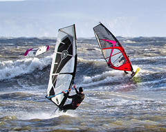 PC311418-Edit (Brian Wadie Photographer) Tags: gulls oystercatcher windsurfing kiting em1 goodlight 14xtc avonbeach canon70300lis hemgistburyhead