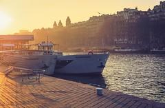 'Eiffel's harbour' (Castelaze_Studio) Tags: paris eiffel tower port suffren harbour france sunset sunrise 5d cold december winter seine river boat peniche péniche flyboat bateaux bateau mouche halo tamron castelaze