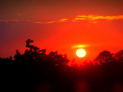 New York Sunset (dimaruss34) Tags: newyork brooklyn dmitriyfomenko image autumn fall sunset sky clouds