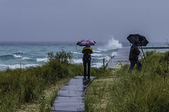 I wasn't alone in this crazy adventure (TAC.Photography) Tags: lakemichigan tacphotography umbrerllas stormyseas rain storms