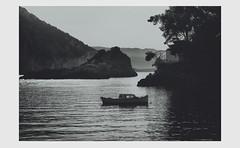 water fellow (partis90) Tags: fujifilm xe2 fuji superebc fujinon 90mm 40 xpanmount sw monochrome schwarzweiss bw landscape photography