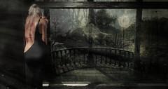 .no more (i  e R t i a  N e v e r f a r) Tags: darkness virtualworld virtual sl