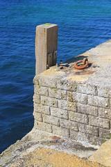 Auderville (mathildepoupin) Tags: auderville village mer vacances normandie hague cotentin holidays paysage famille bonheur moments sauvage verdure nature champ prs paturages moutons vaches phare balade promenade t summer plage cte bleu soleil sun