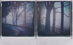 Morning autumn drive (ltpaperhouse) Tags: diptych sx70 impossibleproject polaroid