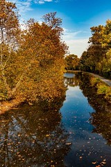 Top shot (kleet245) Tags: northamptoncounty fall pa pennslyviania water waterscape lehighcanal canal trees nature reflections sky canon canoneos lehighvalley
