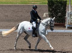 161023_Aust_D_Champs_Sun_Med_4.3_6707.jpg (FranzVenhaus) Tags: athletes dressage australia siec equestrian riders horses performance event competition nsw sydney aus
