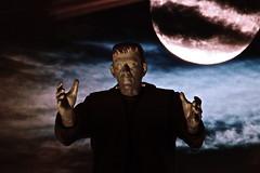"Macro Mondays - ""Spooky and Frightful"" (not beck) Tags: macromondays spookyandfrightful eerie horror frankenstein frankensteins monster moonlight full moon halloween classic movie creepy scary terror karloff universal"