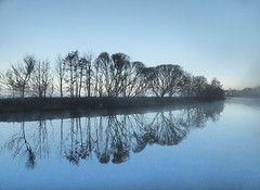 Bank (tobymeg) Tags: river reflection mist sunrise trees sky fog scotland dumfries panasonic dmcfz72 nith