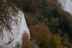 Chalk Cliffs of Rugen (DidaK) Tags: germany rugen cliffs trees