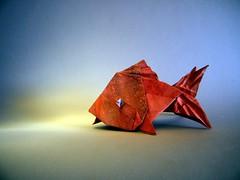 Goldfish - Quentin Trollip (Rui.Roda) Tags: origami papiroflexia papierfalten poisson rouge pez dorado peixe goldfish quentin trollip