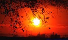 She's Electric......... (law_keven) Tags: costamesa orangecounty usa america sky red orange silhouettes trees powerstation