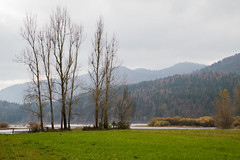 Eslovenia-2016-709 (Jos Manuel Garcs) Tags: dolenjejezero cerknica eslovenia si