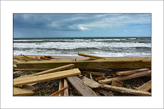 Soon to be drift wood (prendergasttony) Tags: elements sky clouds sea waves surf sand beach wood storm hurricane matthew nikon d7200 nature outdoors weather usa states america jacksonville day global climate change warming