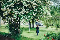 In the garden (Roxo15) Tags: 2016 50mmf14 anna bokeh cantal lieux personnes sonya7 stmamet vsco sony
