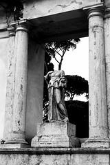 Kippig (Noonski) Tags: monochrome rome italia bw black blackwhite blackandwhite white zwart wit statue park buste head