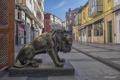 Torrelavega.- (alfonso-tm) Tags: torrelavega cantabria callejera leon estatua fujifilmxt1 plaza calle
