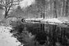 Wintry Reflections, 2016.11.20 (Aaron Glenn Campbell) Tags: lehighriver thornhurst lackawannacounty nepa pennsylvania sony a6000 ilce6000 mirrorless snowfall snow river reflections rokinon 12mmf2ncs bw blackandwhite wooded trees macphun luminar nikcollection