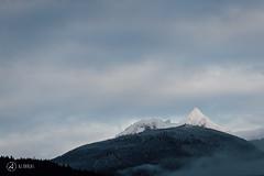 atwell-291116-ajbarlas-3862.jpg (A R D O R) Tags: ajbarlas ardorphotography atwell atwellmountain diamondhead landscape mountains squamish